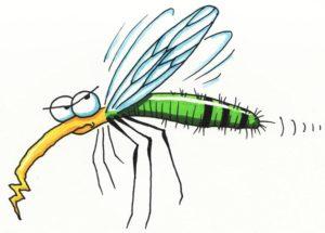 """Không phải """"thịt thơm"""" hay """"máu ngon"""", đây mới là nguyên nhân khiến bạn bị muỗi đốt nhiều hơn người khác"""
