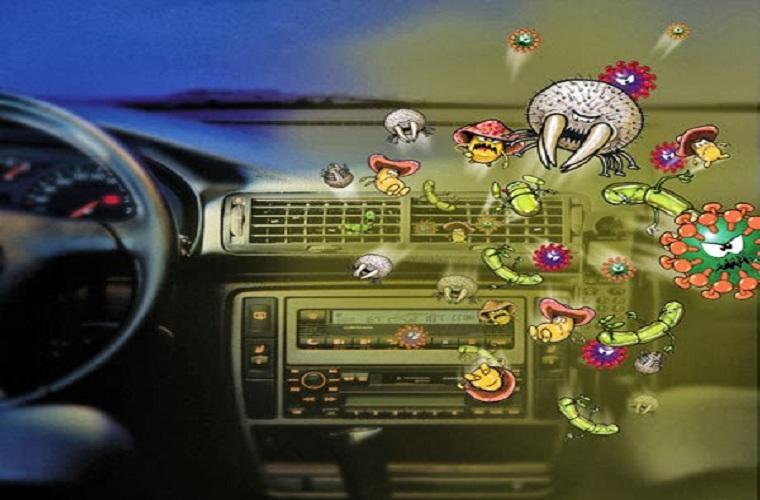 Ô tô chứa hơn 700 loại vi khuẩn gây hại